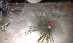 Gonzalo Aramburu Dinner 3