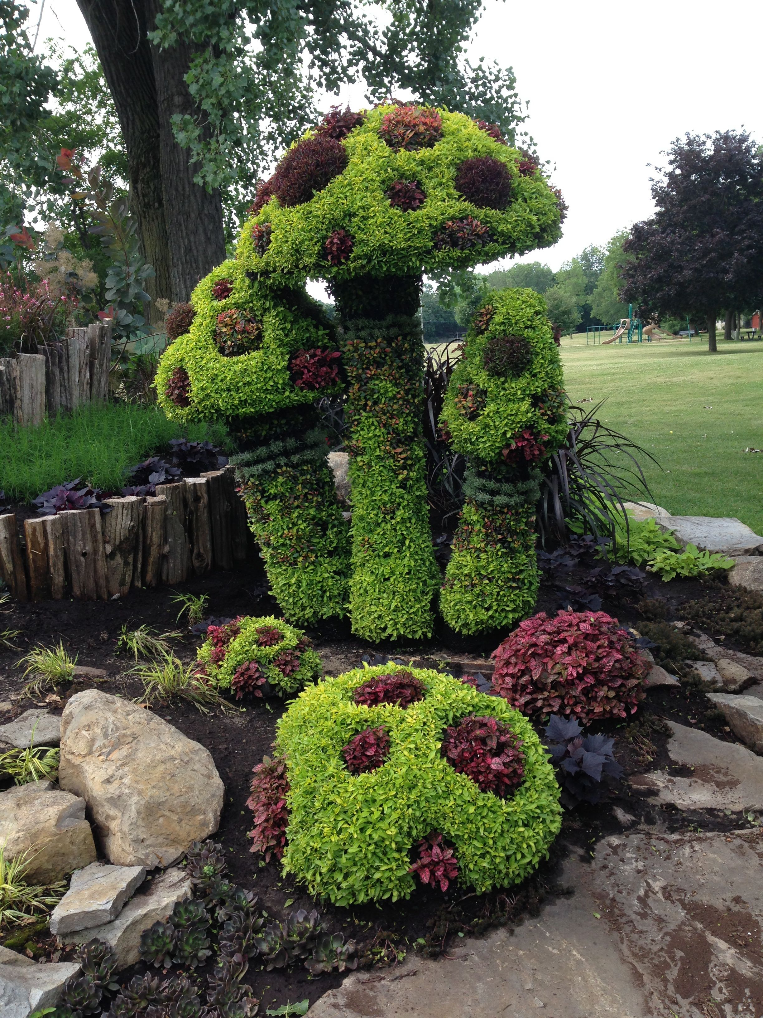 World S Best Mini Garden Musings And Mutterings Of A